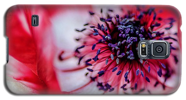 Galaxy S5 Case featuring the photograph Harmony Scarlet Poppy Anemone by Julie Palencia