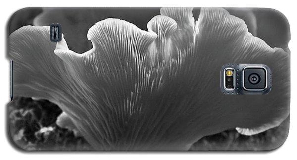 Harmony Galaxy S5 Case