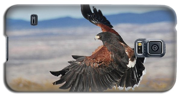 Harris's Hawk Galaxy S5 Case