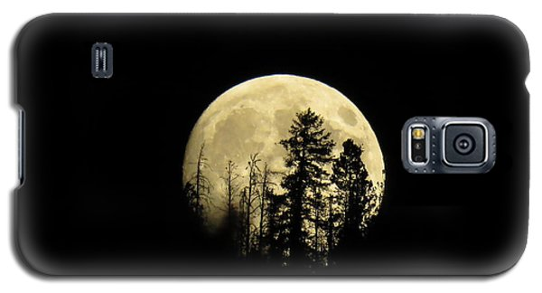 Galaxy S5 Case featuring the photograph Harvest Moon by Karen Shackles