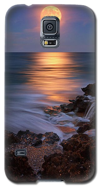Harvest Moon Rising Over Beach Rocks On Hutchinson Island Florida During Twilight. Galaxy S5 Case by Justin Kelefas