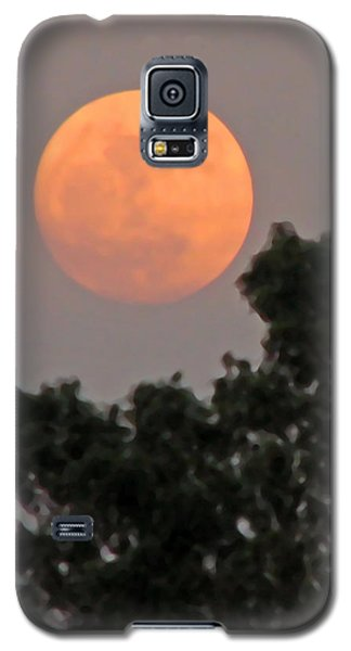 Harvest Moonrise Galaxy S5 Case