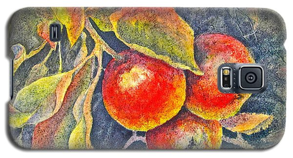 Harvest Time Galaxy S5 Case by Carolyn Rosenberger
