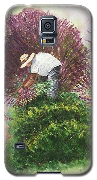Harvesting Lavender Galaxy S5 Case