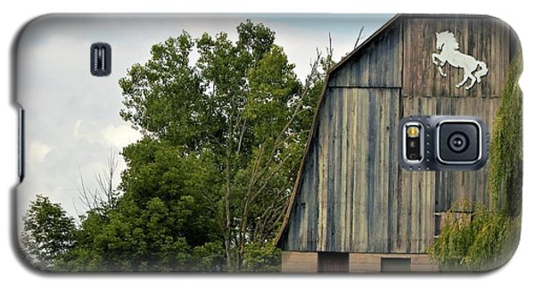 0017 - Hassler Lake Road Horse Barn Galaxy S5 Case