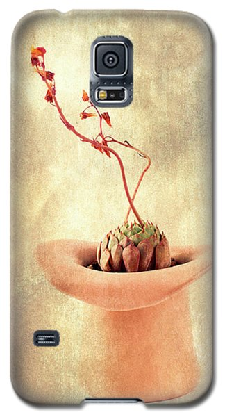 Galaxy S5 Case featuring the photograph Hat And Echeveria  by Catherine Lau