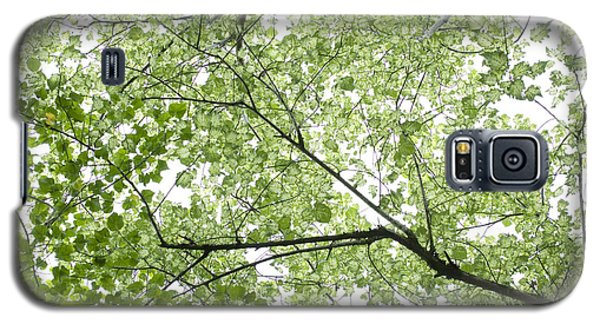 Hau Tree Canopy Galaxy S5 Case
