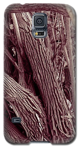 Hau Trees Galaxy S5 Case