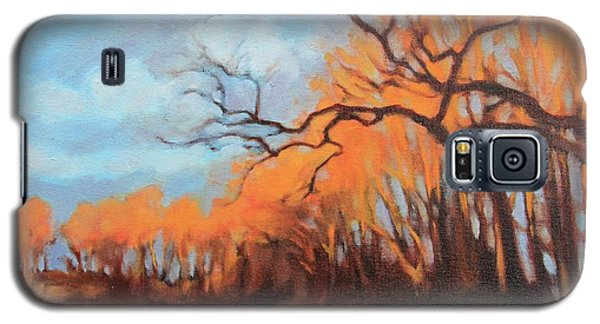 Galaxy S5 Case featuring the painting Haunting Glow by Andrew Danielsen