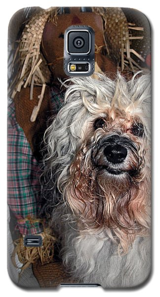 Galaxy S5 Case featuring the photograph Havanese Cutie by Sally Weigand