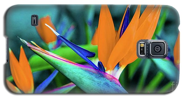 Hawaii Bird Of Paradise Flowers Galaxy S5 Case