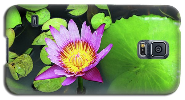 Galaxy S5 Case featuring the photograph Hawaii Flora by Denise Moore