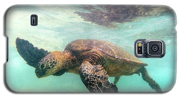 Hawaiian Green Sea Turtle Galaxy S5 Case