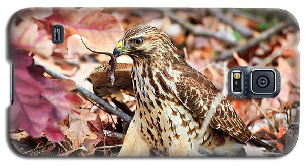 Hawk Catches Prey Galaxy S5 Case