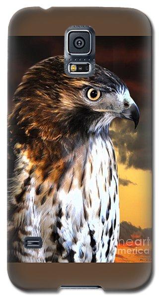 Hawk Sunset Galaxy S5 Case by Adam Olsen