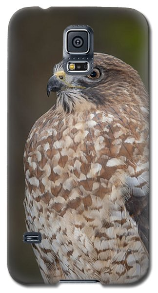 Galaxy S5 Case featuring the photograph Hawk by Tyson and Kathy Smith