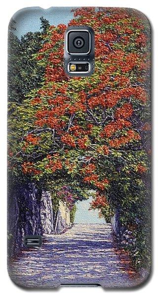 Hawkins Hill Galaxy S5 Case