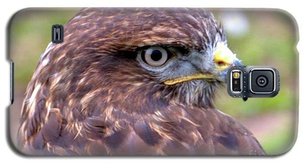 Hawks Eye View Galaxy S5 Case by Stephen Melia