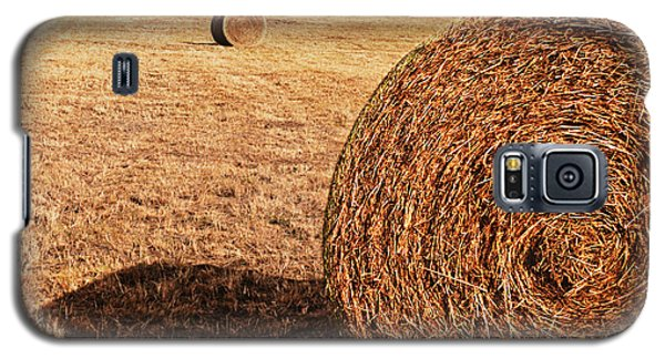 Galaxy S5 Case featuring the photograph Hay In The Field by Tamyra Ayles