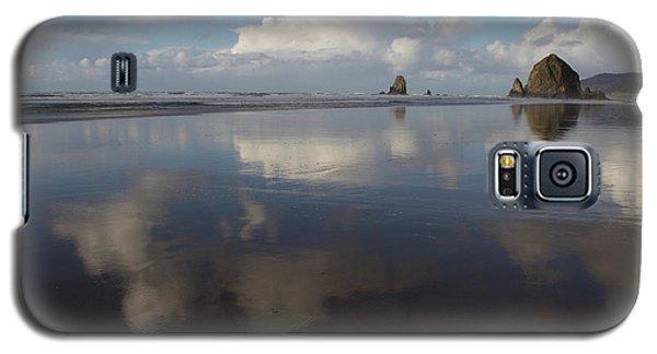 Haystack Needles Horizon Fc Galaxy S5 Case