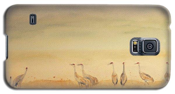 Hazy Days Cranes Galaxy S5 Case
