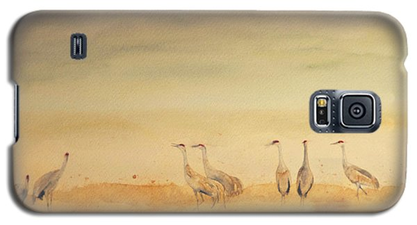 Hazy Days Cranes Galaxy S5 Case