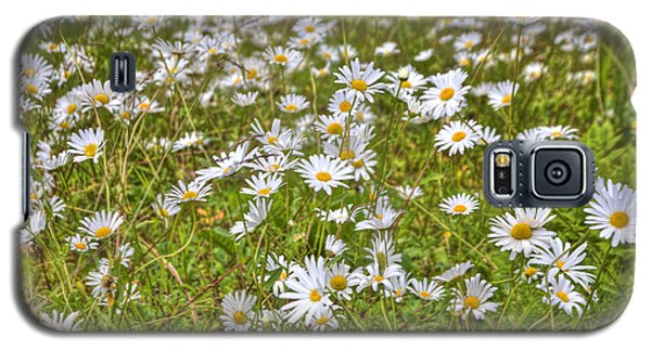 Galaxy S5 Case featuring the photograph Hdr Desert Wildflowers by Matthew Bamberg