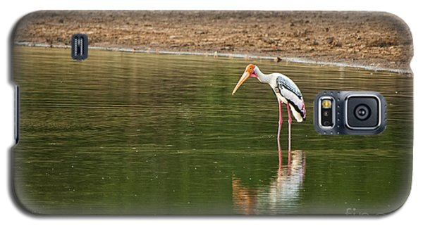 The Painted Stork  Mycteria Leucocephala  Galaxy S5 Case