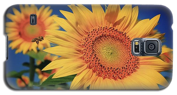 Galaxy S5 Case featuring the photograph Heading For Gold by Chris Berry