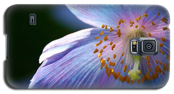 Galaxy S5 Case featuring the photograph Healing Light by Byron Varvarigos