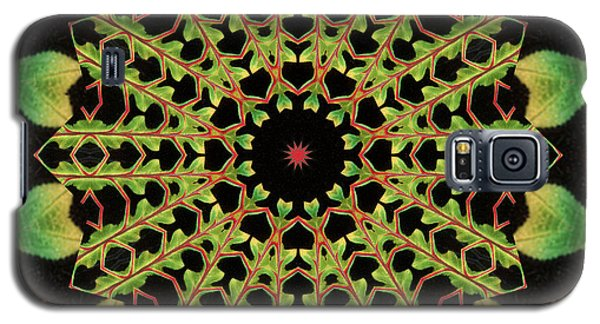 Healing Mandala 13 Galaxy S5 Case by Bell And Todd