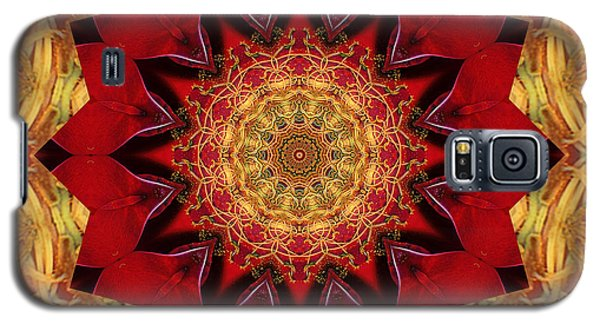 Healing Mandala 28 Galaxy S5 Case by Bell And Todd