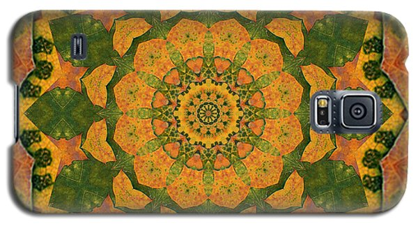 Galaxy S5 Case featuring the photograph Healing Mandala 9 by Bell And Todd