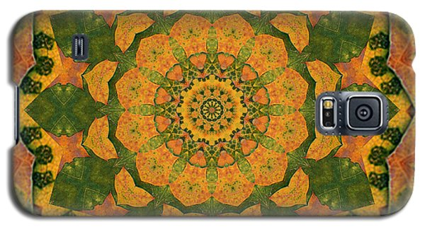 Healing Mandala 9 Galaxy S5 Case by Bell And Todd