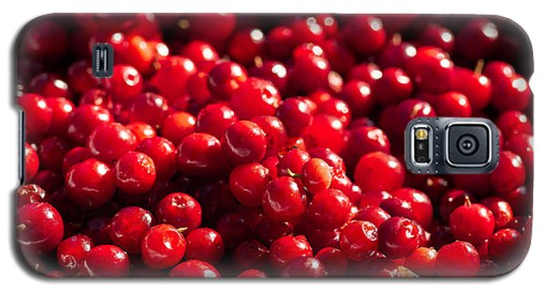 Healthy Pile Of Lingonberries Galaxy S5 Case