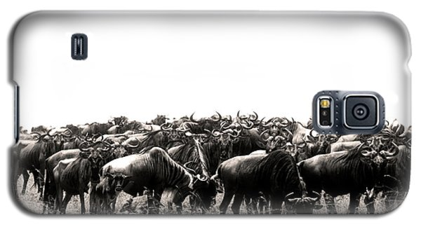 Herd Of Wildebeestes Galaxy S5 Case