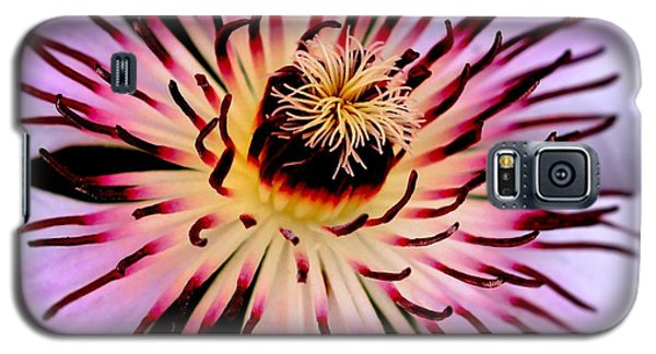 Heart Of A Clematis Galaxy S5 Case by Baggieoldboy