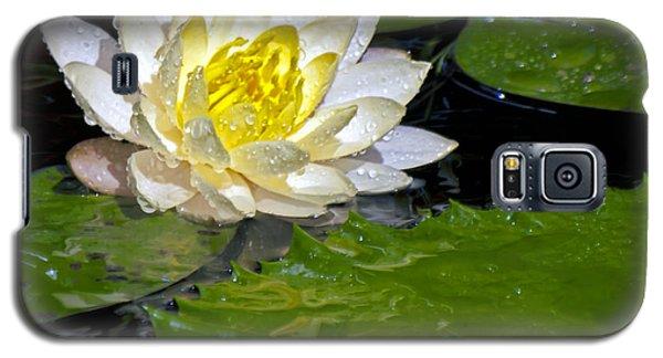 Galaxy S5 Case featuring the photograph Heart Of Gold by Ken Frischkorn