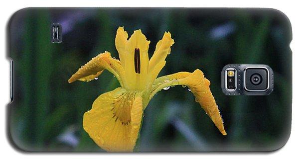 Heart Of Iris Galaxy S5 Case
