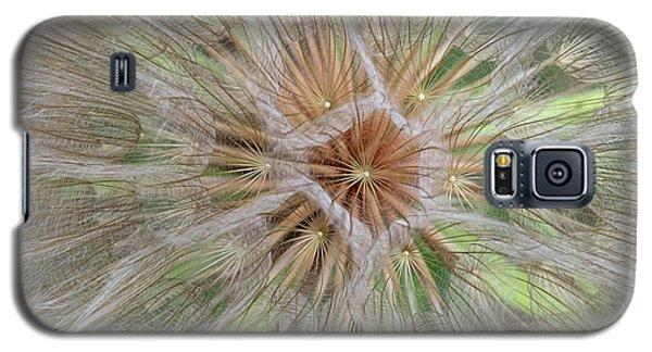 Heart Of The Dandelion Galaxy S5 Case