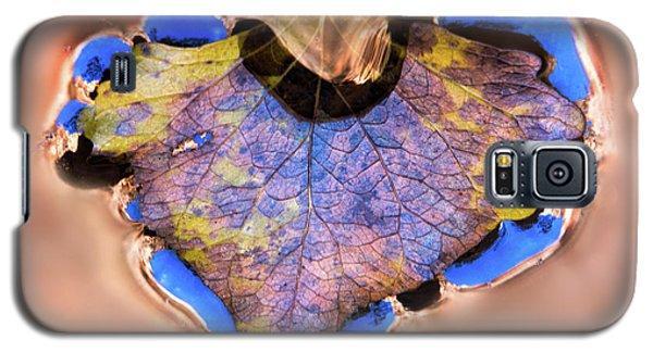 Heart Of Zion Utah Adventure Landscape Art By Kaylyn Franks Galaxy S5 Case
