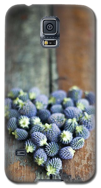 Heart Shaped Blue Thistle Buds Galaxy S5 Case