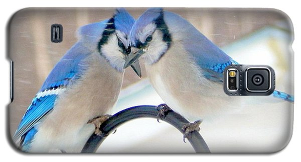 Bluejay Galaxy S5 Case - Heart To Heart by Karen Cook