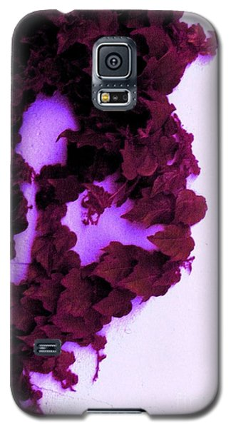 Heartbreak Galaxy S5 Case by Vanessa Palomino