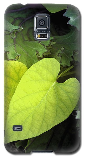 Hearts In Nature Galaxy S5 Case