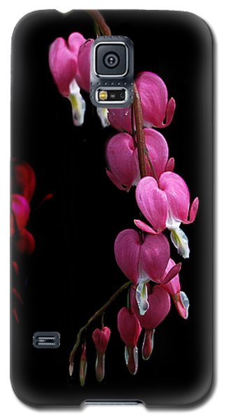 Galaxy S5 Case featuring the photograph Hearts In The Dark by Susan Capuano