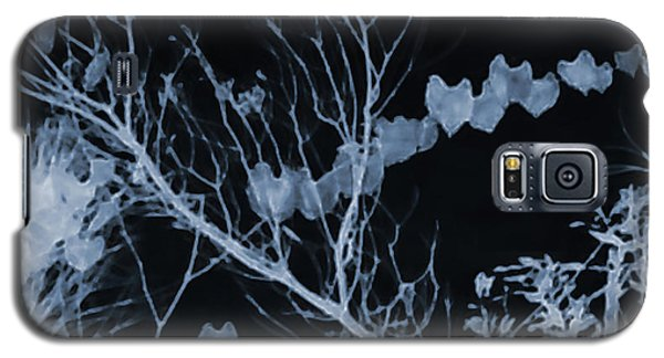 Hearts Of Nature Galaxy S5 Case