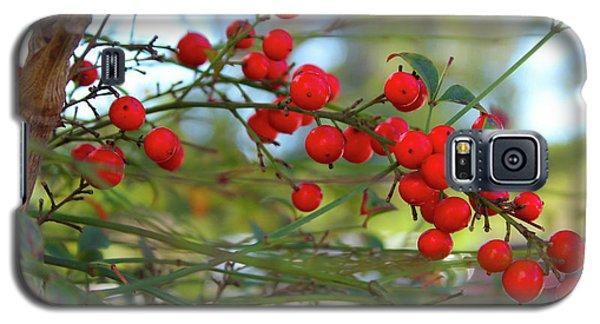 Heavenly Bamboo Galaxy S5 Case