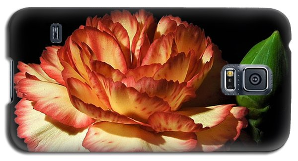 Heavenly Outlined Carnation Flower Galaxy S5 Case
