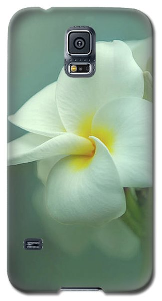 Galaxy S5 Case featuring the photograph Heavenly Plumeria by Angie Vogel